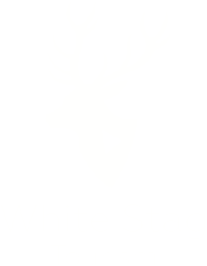 Whitestag Tourism Logo
